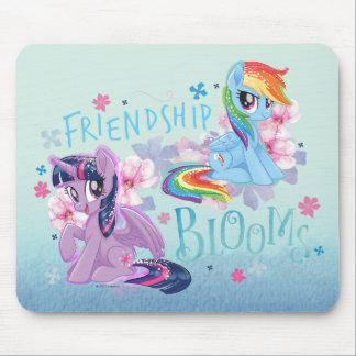 My Little Pony | Twilight and Dash - Friendship Mouse Pad
