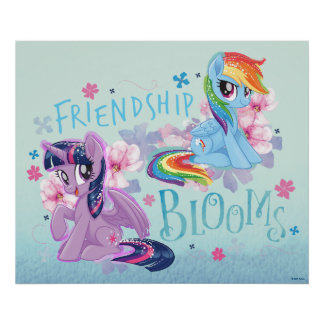 My Little Pony   Twilight and Dash - Friendship Poster