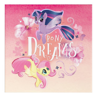 My Little Pony | Twilight and Fluttershy - Dreams Acrylic Print