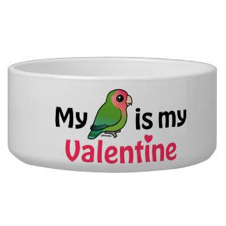 My Lovebird Is My Valentine