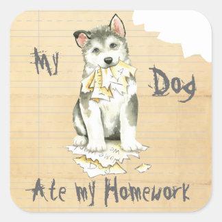 My Malemute Ate My Homework Square Sticker