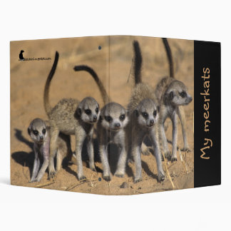 My Meerkats Binder