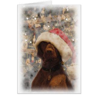 My Merry Christmas Vizsla Card