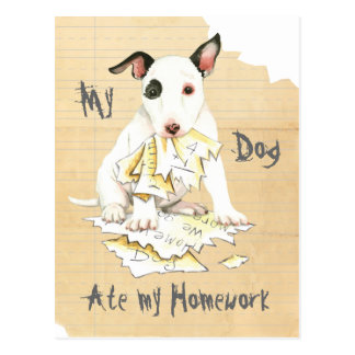 My Miniature Bull Terrier Ate My Homework Postcard