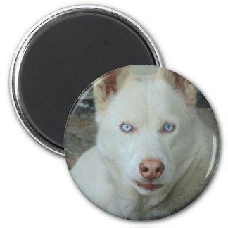 My Mona lisa eyes 2 Inch Round Magnet