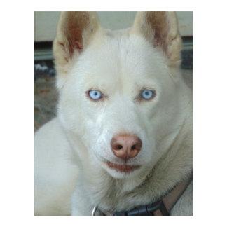 My Mona lisa eyes Letterhead