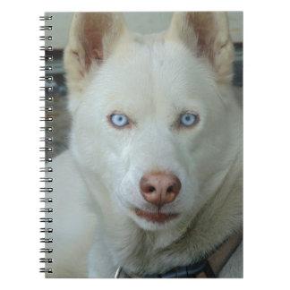My Mona lisa eyes Notebooks