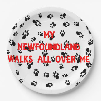 my newfie walks on me paper plate