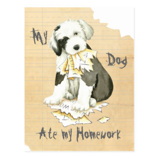 My Old English Sheepdog Ate My Homework Postcard