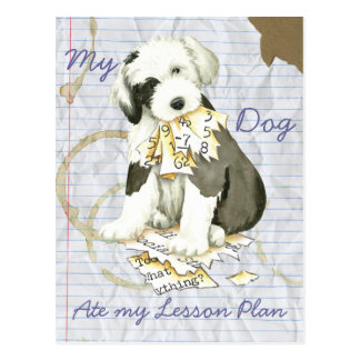 My Old English Sheepdog Ate my Lesson Plan Postcard