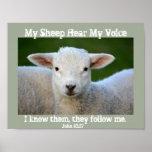 My Sheep Hear My Voice, Bible Verse John 10:27, Poster