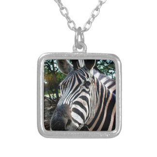 My  Strippy Friend Silver Plated Necklace