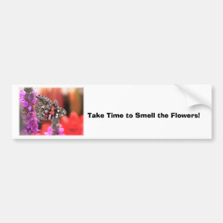 my stuff4 055, Take Time to Smell the Flowers! Bumper Stickers