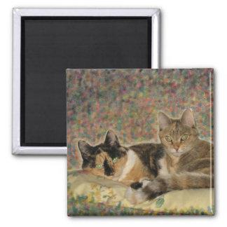 My Sweet Kitties magnet