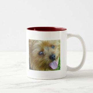 My Yorkie Two-Tone Coffee Mug