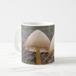 Mycena inclinata Mushroom Mug