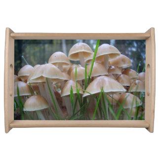 Mycena inclinata Mushroom Serving Tray