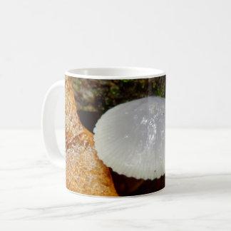 Mycena stylobates Mushroom Mug