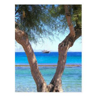 Mykonos, Greece, Island Life Postcard