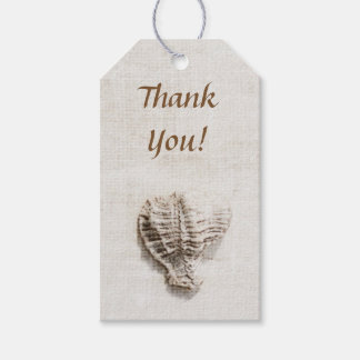 Mysteries of the sea seashells pack of gift tags