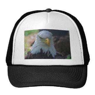 Mysterious Treasure Trucker Hat