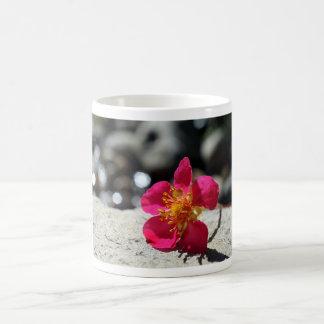 Mystery Pink Flower Coffee Mug