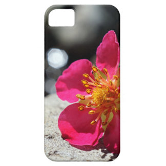 Mystery Pink Flower iPhone 5 Case