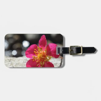 Mystery Pink Flower Luggage Tag