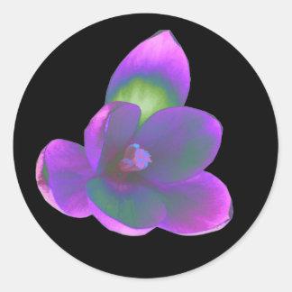Mystic Beauty Crocus Flower Sticker