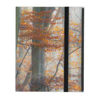 Mystic Foggy Forest in Autumn, protective hardcase iPad Cover
