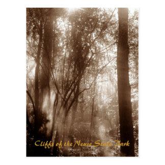 Mystic Morning CN1 - postcard