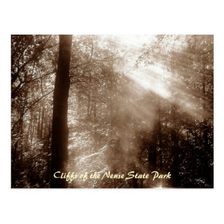 Mystic Morning CN4 - postcard