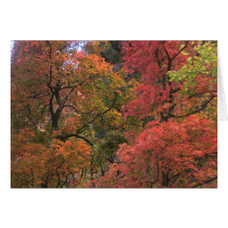 Mystical Autumn (3) Greeting Cards