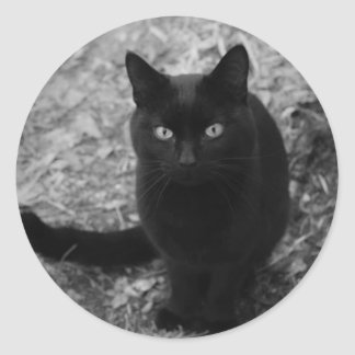 Mystical Feline Classic Round Sticker