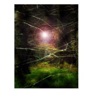 Mystical Forest Postcard