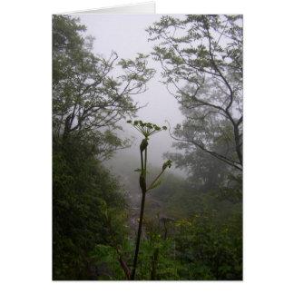Mystical Morning Card