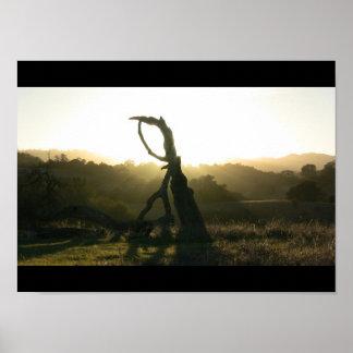 Mystical Revelation - Poster