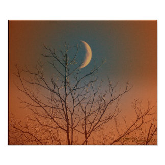 Mystical Smiling Moon Poster