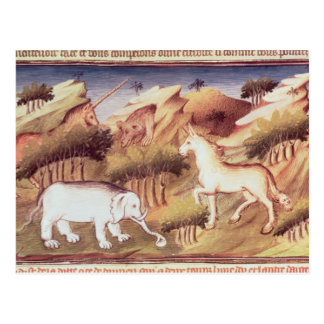 Mythical animals in the wilderness postcard