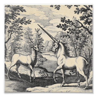 Mythical Unicorn in the Forest Photo Print