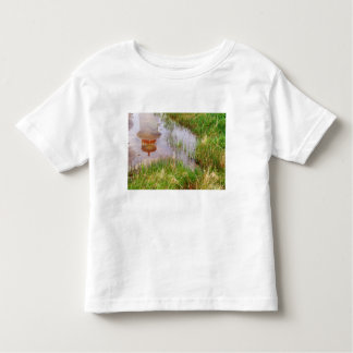 N.A. Canada, Nova Scotia, Peggy's Cove. Toddler T-shirt