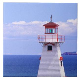 N.A. Canada, Prince Edward Island. Cape Tryon Ceramic Tiles
