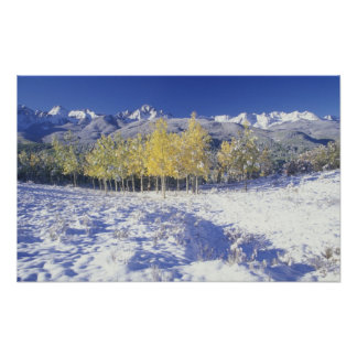 N.A., USA, Colorado, San Juan Mts Fresh snow Poster