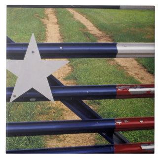 N.A., USA, Texas, Lake Buchanan, Texas flag Tile