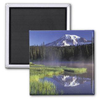 N.A., USA, Washington, Mt. Rainier National 5 Square Magnet
