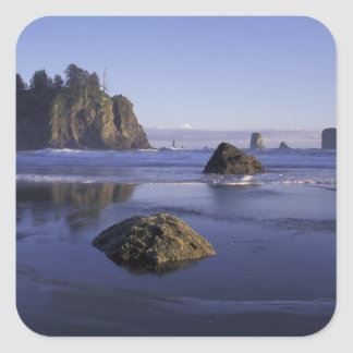 N.A., USA, Washington, Olympic National Park, 3 Square Sticker