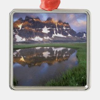 NA, Canada, Alberta, Tonoquin Valley. Jasper Silver-Colored Square Ornament