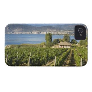 NA; Canada; British Columbia; Okanagan Valley; iPhone 4 Cases