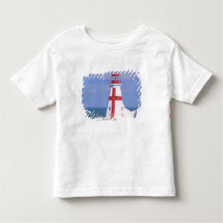 NA, Canada, New Brunswick, Campobello Island. 6 T-shirts