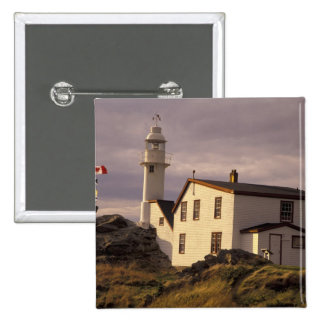 NA, Canada, Newfoundland, Lobster Cove. Lobster 2 Inch Square Button
